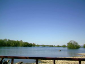 Η Λίμνη της Σκόδρας, όπως φαίνεται από τον παραλίμνιο πεζόδρομο.