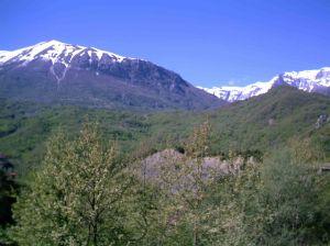 Τοπίο από την εξοχή της Βορείας Ηπείρου, από τη διαδρομή Κορυτσά-Αργυρόκαστρο.