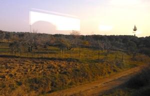 Εικόνα απ' το παράθυρο του τρένου που διασχίζει την κοιλάδα του Μαιάνδρου. Η περιοχή παράγει ελιές, σιτηρά, βαμβάκι κ.ά., αλλά το προϊόν για το οποίο κυρίως φημίζεται είναι τα σύκα.
