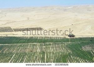 Αρδευόμενη καλλιέργεια στην έρημο Νεγκέβ, στο Ισραήλ. Πηγή εικόνας http://www.shutterstock.com/pic-103395926/stock-photo-desert-farming-irrigation-in-the-negev-israel.html