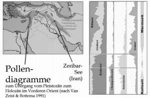 Διάγραμμα γύρης από τη λίμνη Ζεριμπάρ, που απεικονίζει την εξέλιξη της βλάστησης κατά τη μετάβαση από τη ψυχρή (Kaltzeit) στη θερμή περίοδο (Warmzeit). Στην πρώτη στήλη αριστερά βλέπουμε ότι, ενώ στην ψυχρή περίοδο κυριαρχούν οι άλλες πόες (Kräuter) και στη θερμή τα δέντρα (Bäume), στην αρχή της θερμής κυριαρχούν για ένα μεγάλο διάστημα τα αγρωστώδη (Gräser). Αυτή τη μεγάλη αύξηση στα αγρωστώδη τη βλέπουμε και στη τελευταία στήλη στα δεξιά. Η περιοχή εξάπλωσης του αγριοκάτσικου κατά την περίοδο της εξημέρωσής του, με ανοικτό γκρίζο χρώμα. Με σκούρο γκρίζο απεικονίζονται οι πιθανές περιοχές πρώτης εξημέρωσής του. Πηγή: Uerpmann (2007).